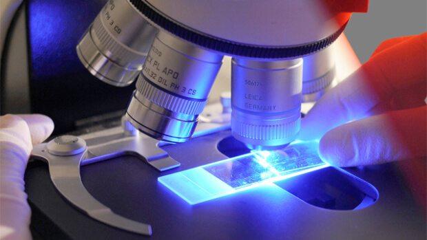 How Do I Become A Cytotechnologist