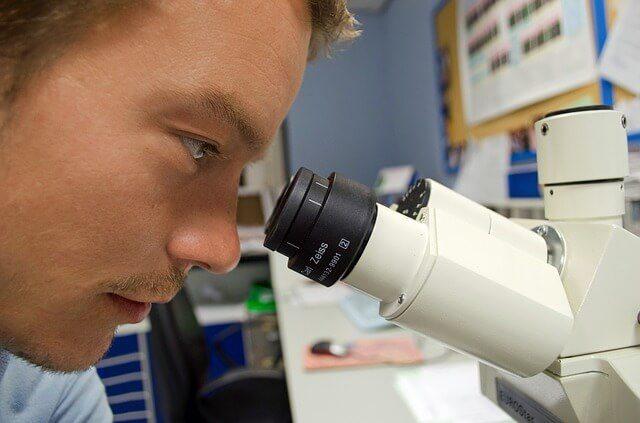 biomedical_engineer
