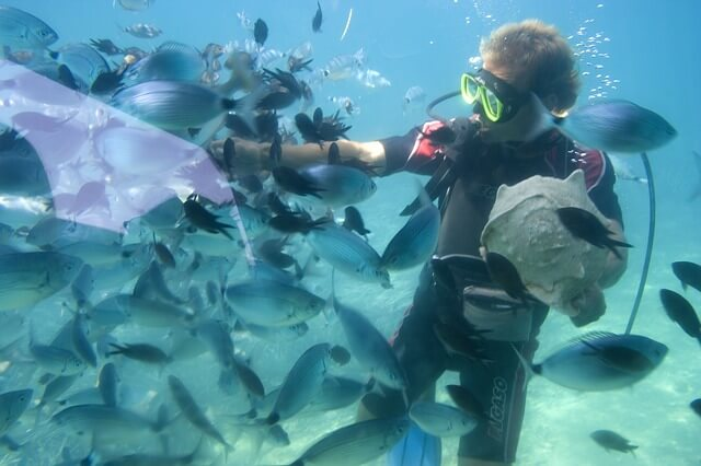 marine_biology