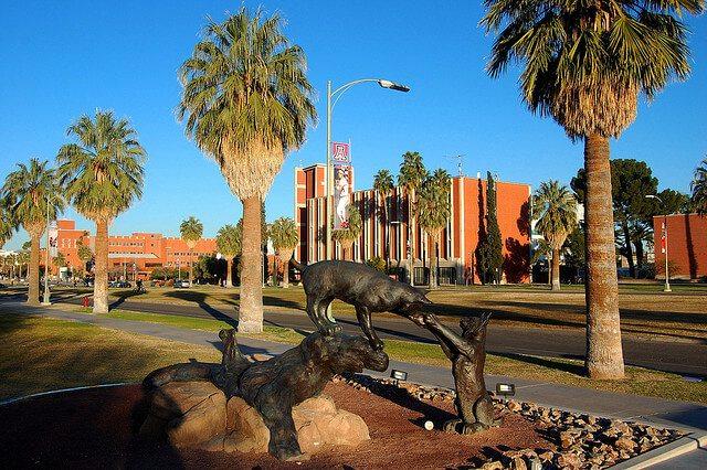 u of arizona