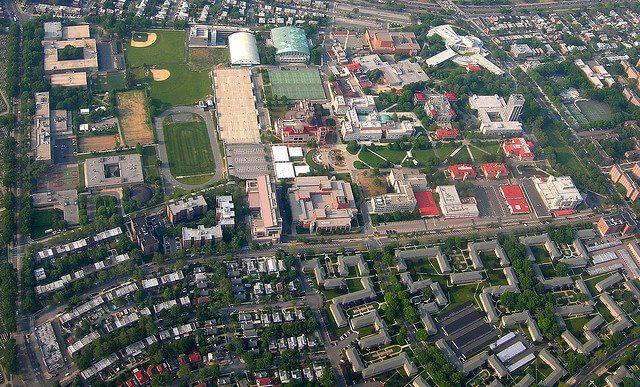 ny university