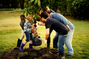 Family, Youth and Community Sciences