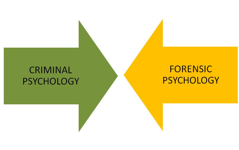 Criminal vs forensic psych