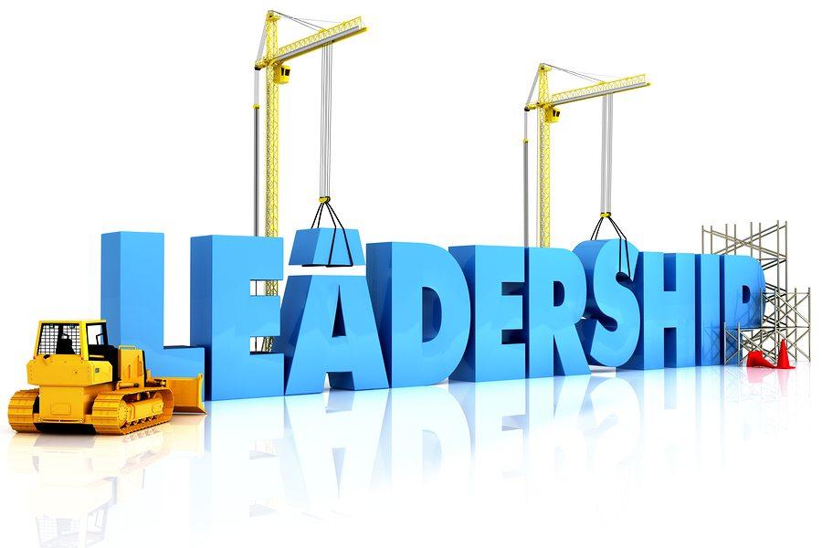 leadership pixie