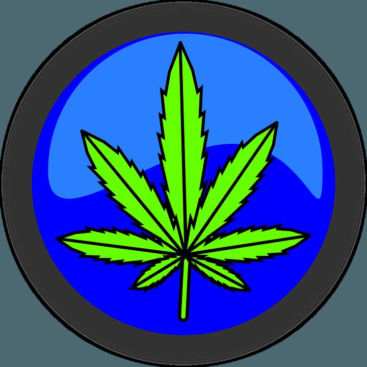 marijuana pix