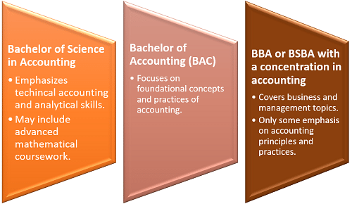 Curricula by type of bachelor's degree in accounting