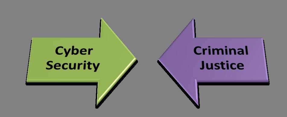 cyber vs criminal 2