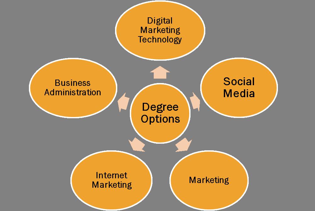 digital market choices