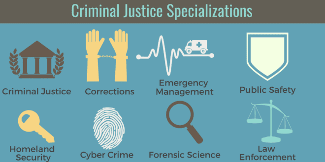 Criminal Justice Degree >> What Can I Do With A Degree In Criminal Justice