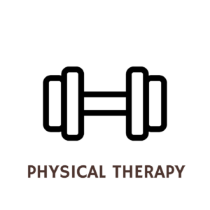 DQPhysicalTherapyIcon