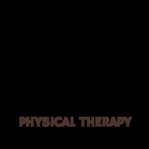 DQPhysicalTherapyIcon