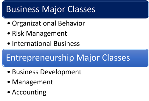 Curriculum Differences Between a Business Degree and an Entrepreneurship Degree