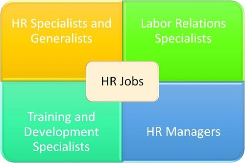 What Kind of Job Can You Get With a Degree in Human Resources?