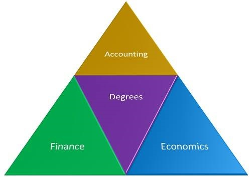 What Degree Do People With a Job in Financial Examination Have?