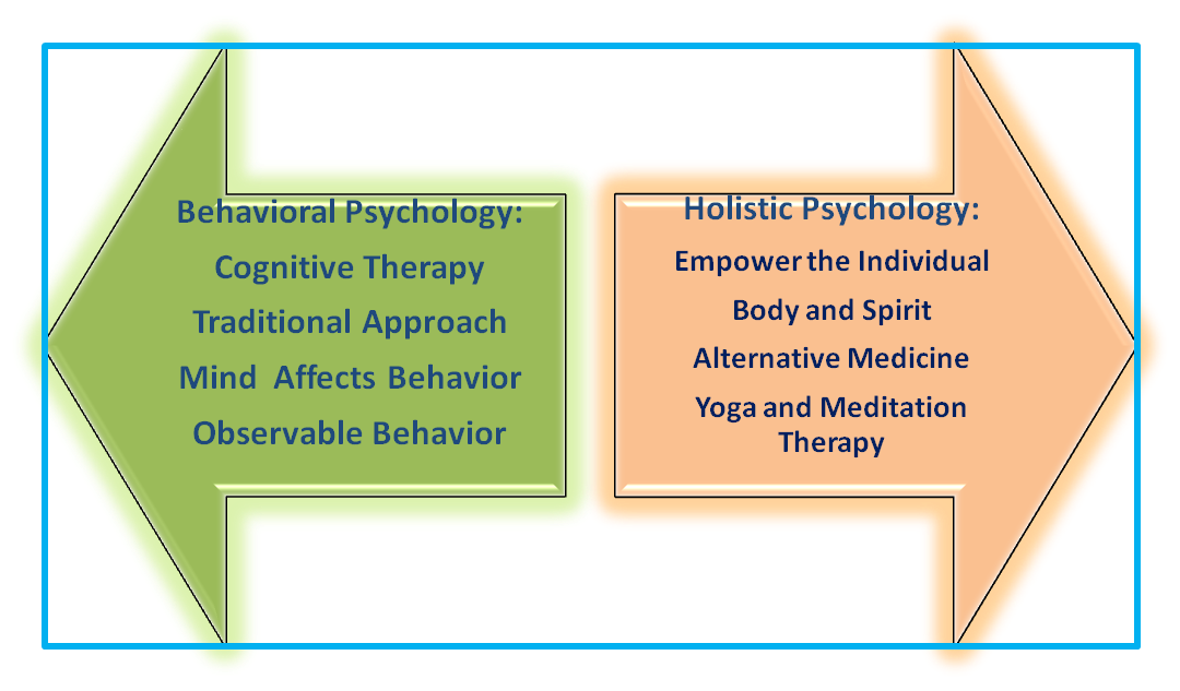 behavior vs holistic psych smart