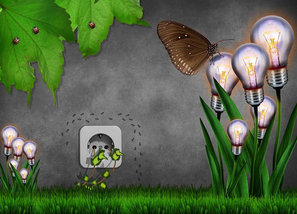environmental friendly pix