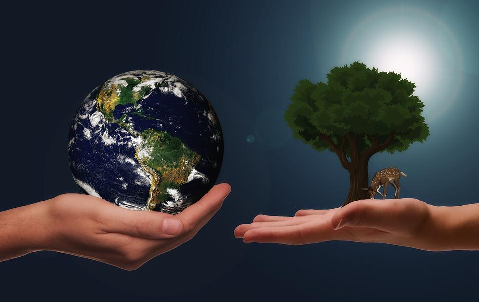 sustainablity pix