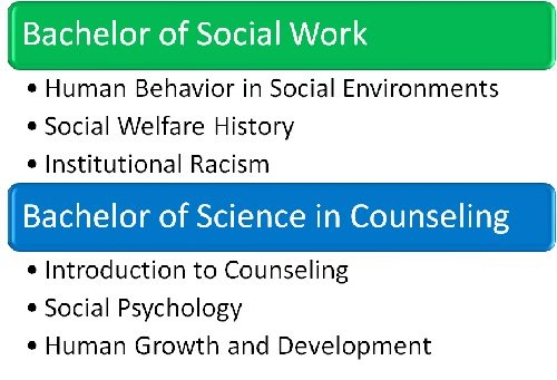 Undergraduate social work vs. counseling coursework