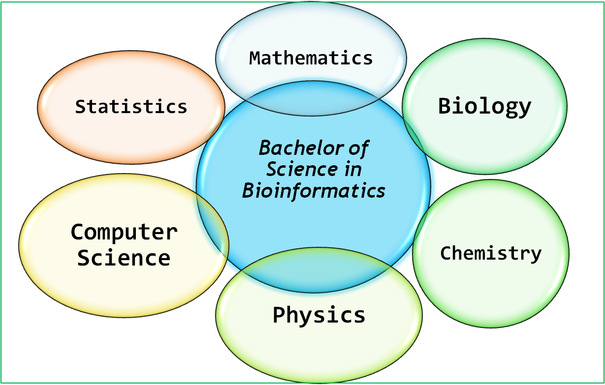 bachelor in bioinformatics smart
