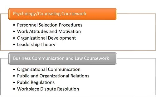 What Classes Will I Take for a Degree in Industrial-Organizational Psychology?