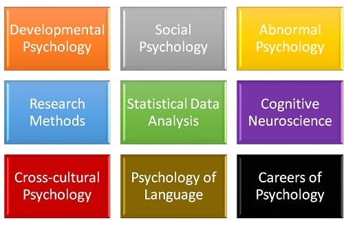 What Classes Will I Take for a Degree in Psychology?
