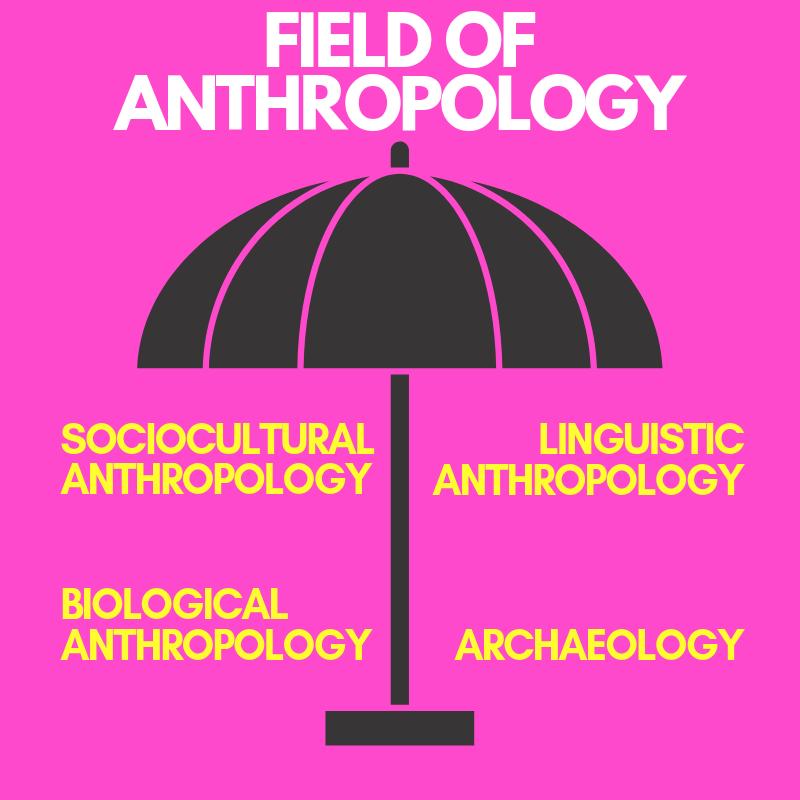 anthropology3