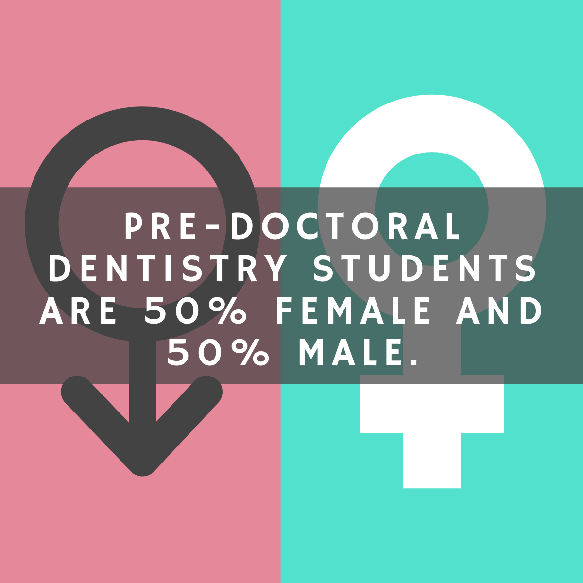 What Can I Do With a Dentistry Degree? - DegreeQuery com