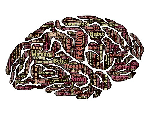What Are the Easiest Degrees to Get in Psychology?