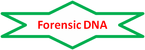 for dna text