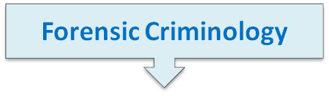 forensic crim text