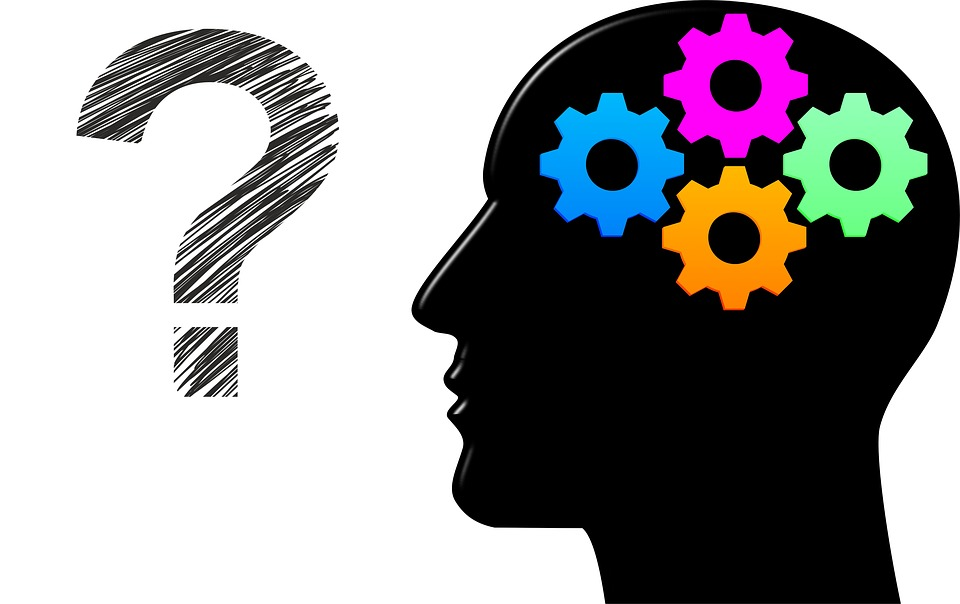 neuroscience brain 2 pix