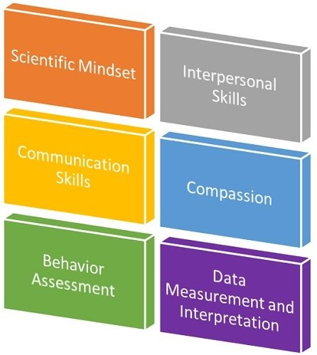 What Makes Someone a Good Behavior Analyst?