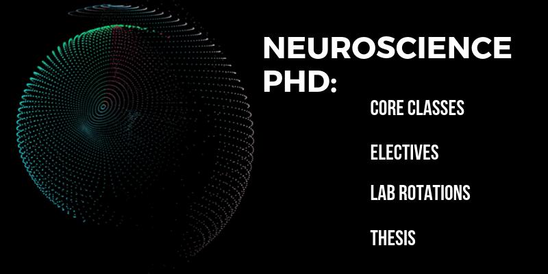 neuroscience6