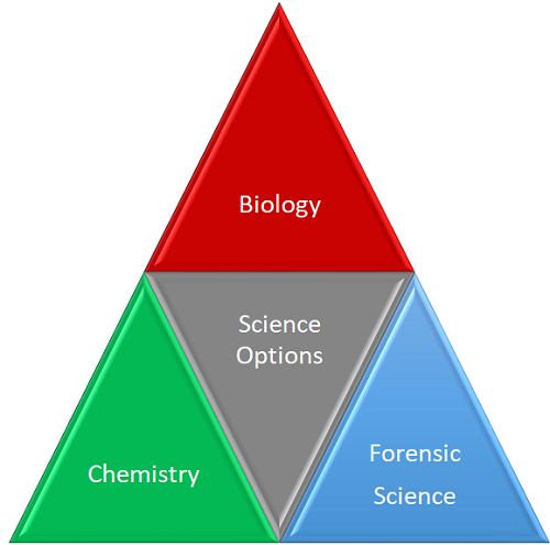 Which Science Would Be the Best to Study in Order to Become a CSI
