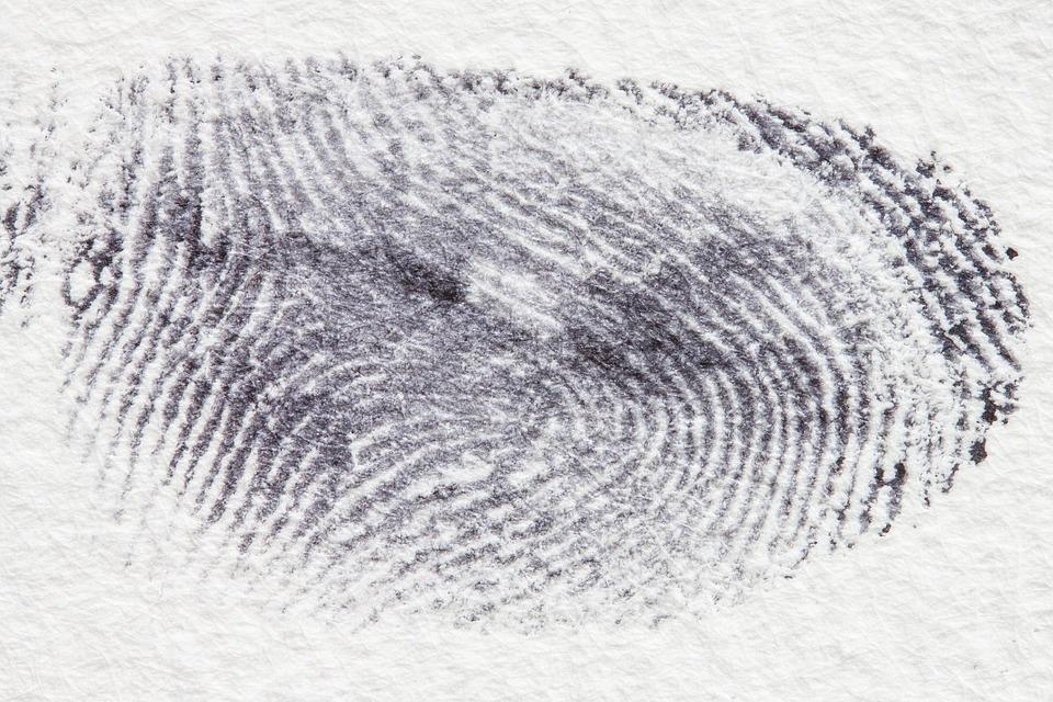 fingerprint pix