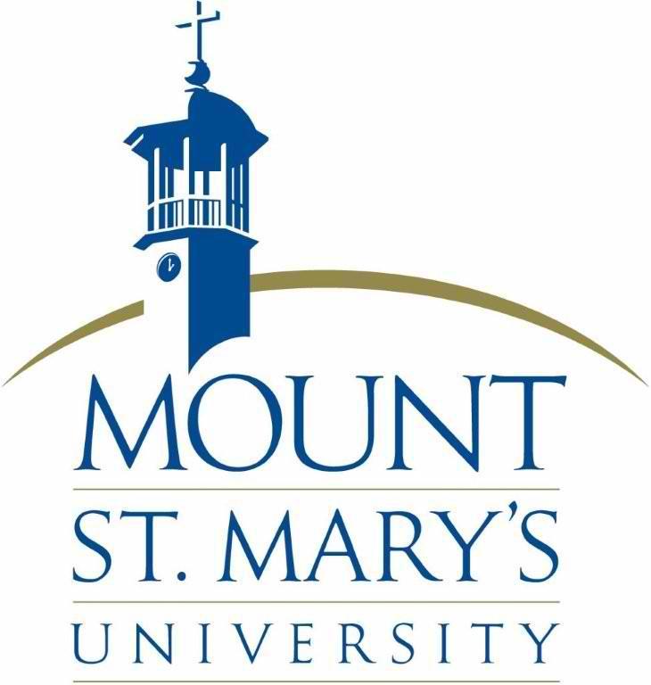 28981 MSMU logo 2c stacked